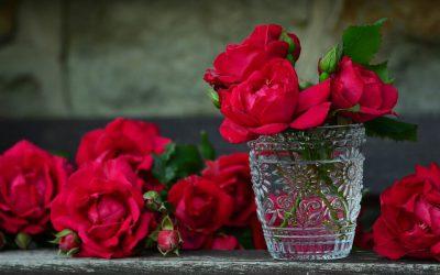 Gdańsk z różą w tle